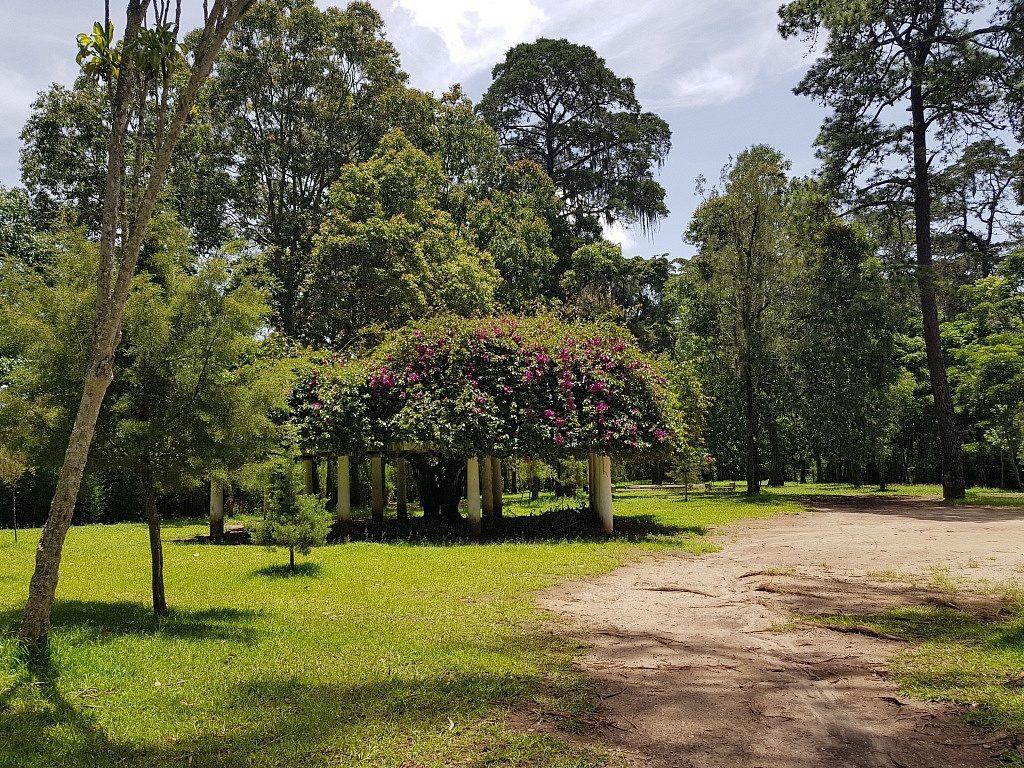 Parque Minerva, zona 2, Ciudad de Guatemala