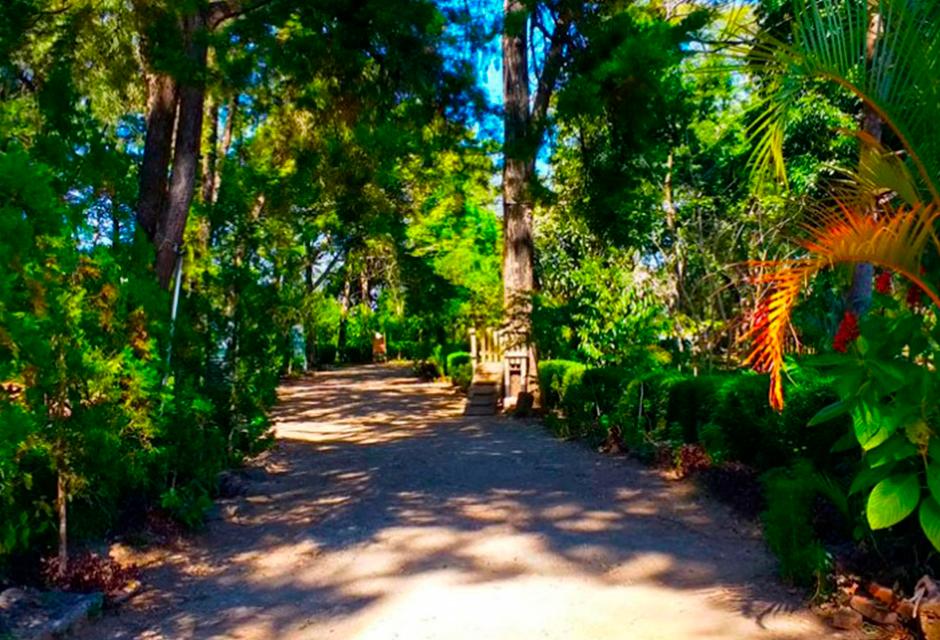Conoce el Sendero: Parque ecológico Ciudad Nueva